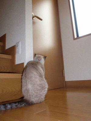 20101021heijituasa_1