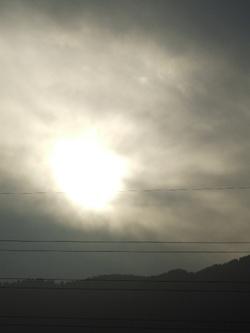 20101113kousa