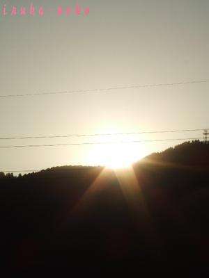 20110118asahi