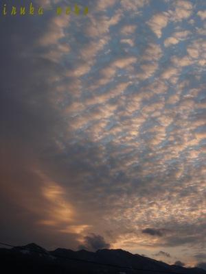 20110118yuuhi2