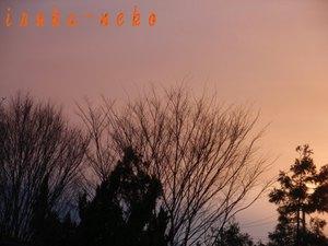 20110302yuuyake