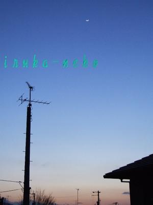 20110308tuki