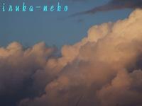 20110317kumo