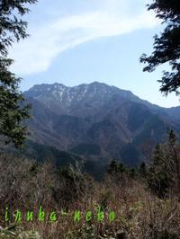20110429ishiduchi