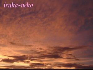 20110825yuuyake