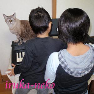 20111103key