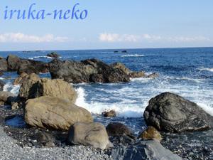 20111113muroto4