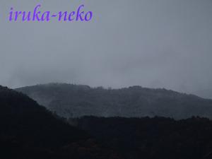 20111209yama