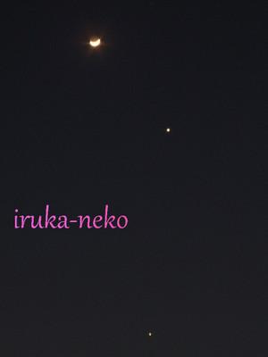 20120327tuki