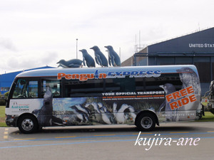 201212nzbus