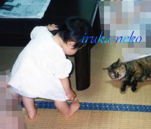 1998chako