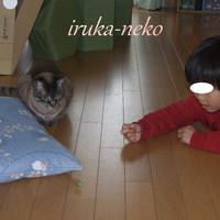 20130401ko1