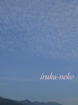 20130828kumo
