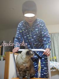 20131119kya5