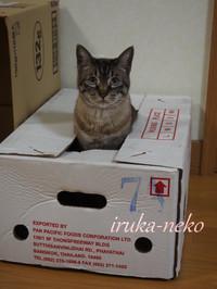 20150506hako5
