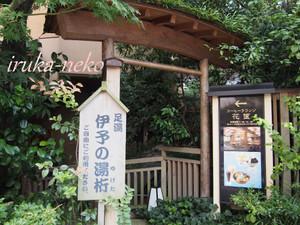 20150921ashiyu5