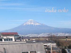 20160103fuji