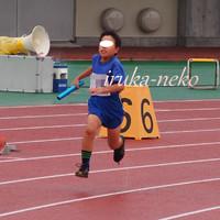 20160625kujira2